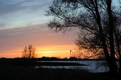 Under a blood red sky (H_v_M) Tags: trees sunset red holland netherlands iceland nikon lek betuwe hvm 15thapril d300s