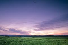 Tres tristes fotografos... (Juan Garcia !) Tags: sunset atardecer nikon nikkor graduated cokin filtros juangarcia comarca lendinez nd8 173528 torredonjimeno d700 jgarciaphoto