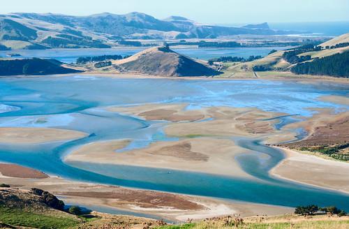 Otago Peninsula 19