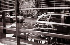 The Black Cat Cafe (Geoff A Roberts) Tags: street leica bw white black film cat 35mm photography 50mm photo cafe nikon photographer kodak scanner geoff candid fitzroy streetphotography australia melbourne rangefinder victoria x m pre plus vic 100 mp roberts 5000 agfa rodinal coolscan summilux asph v2 vii plusx the streetphotographer leitz arista 1450 e43 r09 5000ed premuim 125135 geoffroberts