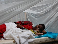 Burundi 14 (canadianredcross) Tags: international health disasterresponse 2010 malaria burundi mosquitonets malariabites bednets worldmalariaday netsafrica mosquitomalaria