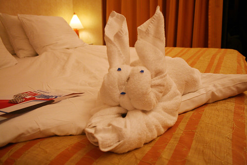 Carnival Spirit - Towel Animal - Bunny