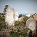Waverly Cemetery Stones