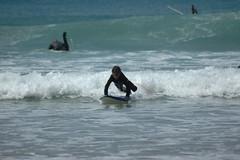 DSC_4845 (Alex Correia) Tags: praia surf santos feliz odeceixe meninas aljezur 2010 arrifana vicentina tnis