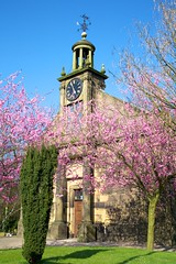 St Aidan's Church Billinge 7 (Mark-Crossfield) Tags: pictures uk greatbritain england tower clock church photo spring image photos blossom picture images cherryblossom billinge staidanschurch photosof picturesof imagesof markcrossfield billingechurch