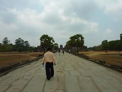Angkor Wat Grounds: Large