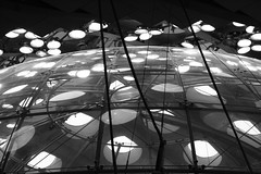 The Landing (ha66ard) Tags: sanfrancisco blackandwhite bw architecture delete5 lights delete2 delete6 delete7 save3 delete3 save7 save8 delete delete4 save save2 structure ceiling save9 save4 save5 save10 save6 biodome californiaacademyofsciences savedbythehotboxuncensoredgroup