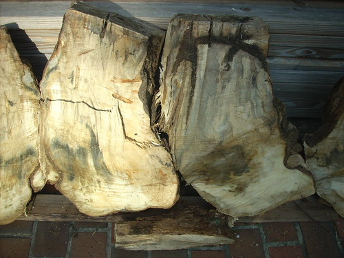 Oak Chunk Split
