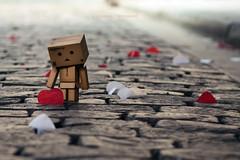 Wedding Confettis (Sandrine Escamilla) Tags: wedding toy petals rice coeur confetti heat figure mariage figurine fertility jouet prosperity yotsuba danbo ptales prosprit fertilit revoltech danboard
