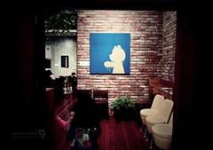 a cat in the blue background (JoHaYeon) Tags: samsung 24mm lcd 14m ois 720p h264 hdmi fullmanual samsungdigitalcamera samsungcamera smartauto samsungimaging wb600 intellistudio20 hz30w 15xzoomwide
