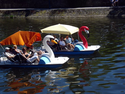 Cool Paddle Boats