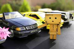 Do you have 1000 Danbolion on you? (butacska) Tags: portrait black color colors car closeup photo driving dof outdoor sony cardboard photograph a100 2010 danbo sarga sonyalpha danboard citromsarga