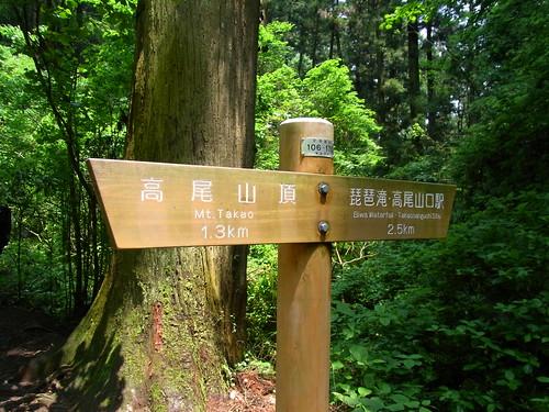 100525 高尾山