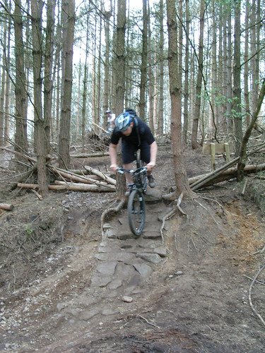 Cannock Chase Follow The Dog Werewolf Drop Singletrack