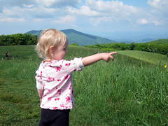 ena at max patch