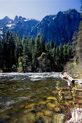 Down River View (Cliff Stone) Tags: california water river landscape spring yosemite yosemitenationalpark springtime yosemitevalley mercedriver sierranevadamtns canoneos40d canonefs1585is