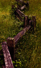 Crooked Fence & Country (BenjaminWalker) Tags: california park city creek fence photography ben country line crescent trail walker national chase redwoods benjamin crooked damnation benwalker benjaminwalker websitegallery benwalkerphotographycom benjaminchasewalker benchasewalker httpwwwbenwalkerphotographycom benwalkerphotography