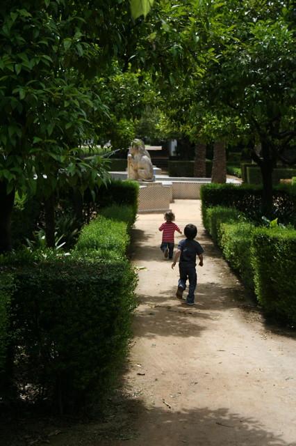 Dianas- Spain 2010 308