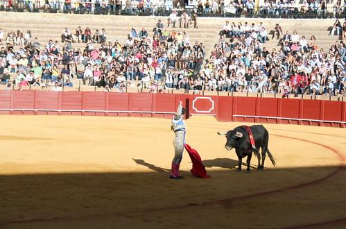 Dianas- Spain 2010 387