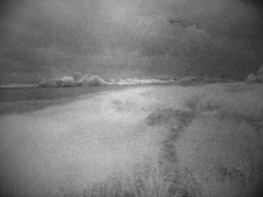Exe Estuary, nr Exton (Matt Brock ) Tags: trees water grass river landscape ir grain devon infrared dreamlike vignette atmospheric exton iphone hoyar72 riverexe exeestuary iphone3g iphoneography photoshopcommobile