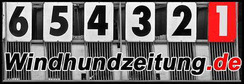 Windhund - Startkasten
