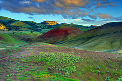 Natural Elements, The Painted Hills, Oregon (Ireena Eleonora Worthy) Tags: flowers light sunset shadow red green texture yellow oregon spring nikon sandstone colours or mitchell blooms shape paintedhills sagebrush johndayfossilbedsnationalmonument paintedhillsunit claystone d700