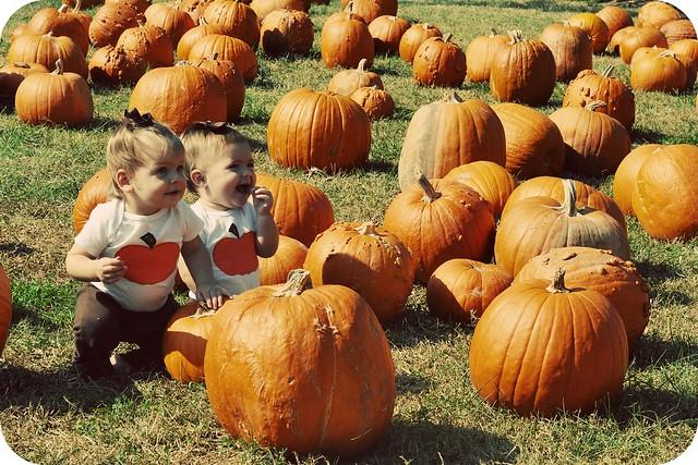 pumpkingirls7