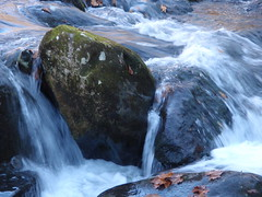 rushing stream (4)