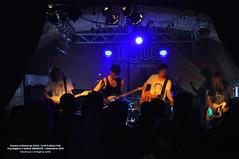 1 Noiembrie 2010 » Dorena și Fluturi pe Asfalt