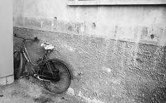 Bicicletta abbandonata (photoday03) Tags: bicletta bike bn monocrome old