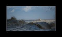 This morning the Sea was nervous.... (Francesco Caracciolo) Tags: arno francesco marinadipisa caracciolo libeccio francescocaracciolo