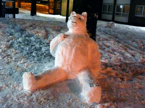 Polar Bear in Bolton !!