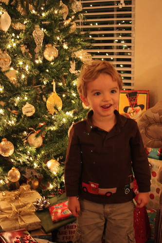 Brady & the Christmas Tree