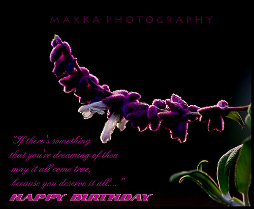 Belated Birthday Wishes Greetings. Belated Birthday wishes