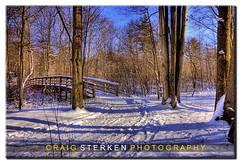 Footbridge in Winter (Craig - S) Tags: bridge blue trees winter sky white snow ski tree forest snowshoe woods path michigan trails rail scene brush trail snowshoeing skis snowshoes crosscountryskiing tobicomarsh skipath footbrige