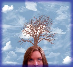 Day 231: Branches of Love (KatB Photography) Tags: blue sky brown white selfportrait abstract tree nature up clouds self hair hearts island weird eyes looking cloudy branches surreal bluesky lookingup selfportait 365 treebranches mothernature cloudysky treesky project365 hanginghearts hairtree headtree