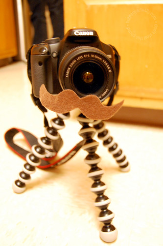 Sonja's camera in disguise