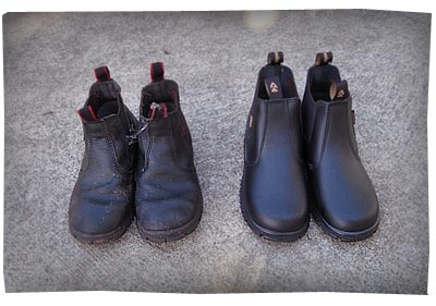 Old Boots, New Boots