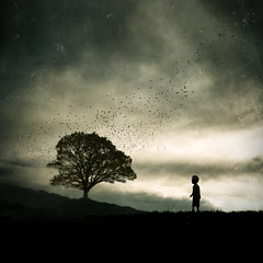 Learn To Say Goodbye (Midnight - Digital) Tags: tree leave birds square child sad emotion horizon digitalart dramatic away goodbye cinematic drama flockofbirds jetadore thegifttree