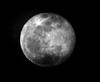 cLoUdS pLaYiNg with the MooN (sherrYgibsoN~here & there...) Tags: moon clouds fullmoon sherry lunar laluna 2010 wolfmoon januarymoon 3661 almostmissedit betweentheclouds twentyten moonwhore 3661days project36612010 project3661yr3 andthefactthatiwaswrappedupinwutheringheightsandcouldntmisstheend~notevenforafullmoon themagnificentspeechbyheathclifftothedeadcathyisoneofthemostromanticeveronscreen oroffforthatmatter yousaidikilledyouhauntmethenthemurdereddohaunttheirmurderersibelieveiknowthatghostshavewanderedonearthbewithmealwaystakeanyformdrivememadonlydonotleavemeinthisabysswhereicannotfindyou