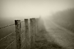 (andrewlee1967) Tags: uk england mist fog sepia fence 50mm track dof bokeh britain path explore barbedwire gb moors frontpage scammonden ef50mmf18 andrewlee andrewlee1967 canon50d