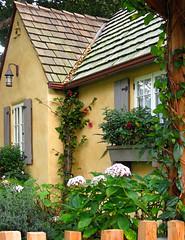 BEYOND THE GARDEN GATE (linda yvonne) Tags: ca vines gate cottage fuschia shutters carmel windowbox bouganvilla hydrangia cottagegarden lindayvonne