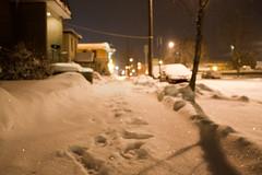 Il neige (Cody La Bière) Tags: street white snow foot footprints fluffy it canadian powder fresh sparkle prints neige freshsnow snowed freshpowder ilneige