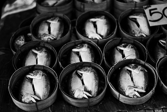 bangkok 2010 - doublefish