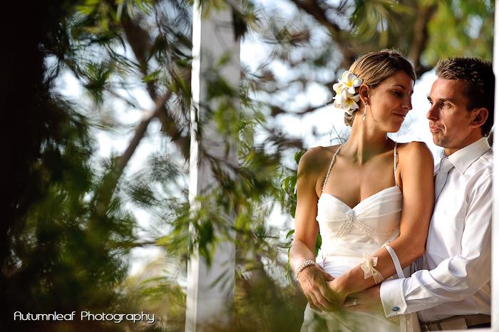 Lea and Todd's Wedding - Romantic