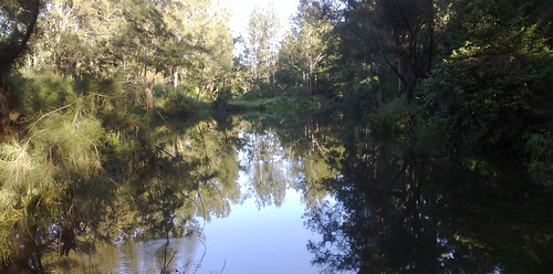 Bunya Crossing, South Pine River