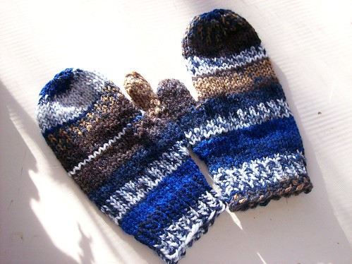 chocolate dipped blueberry mitts