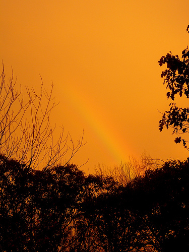 golden rainbow