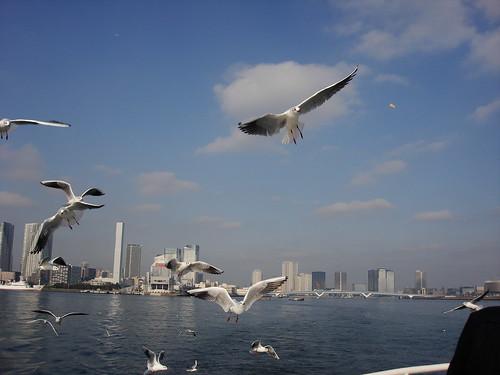 2010-02-18 東京之旅第四天 136