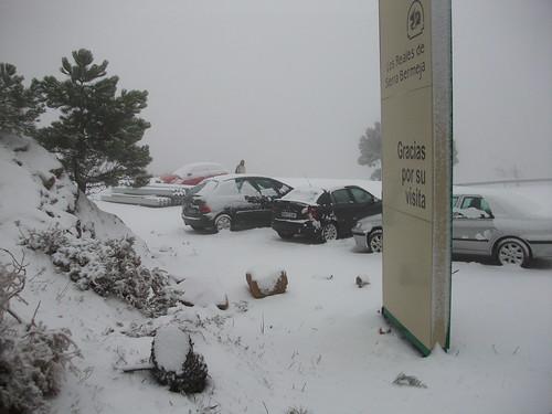 Coches aparcados nevados